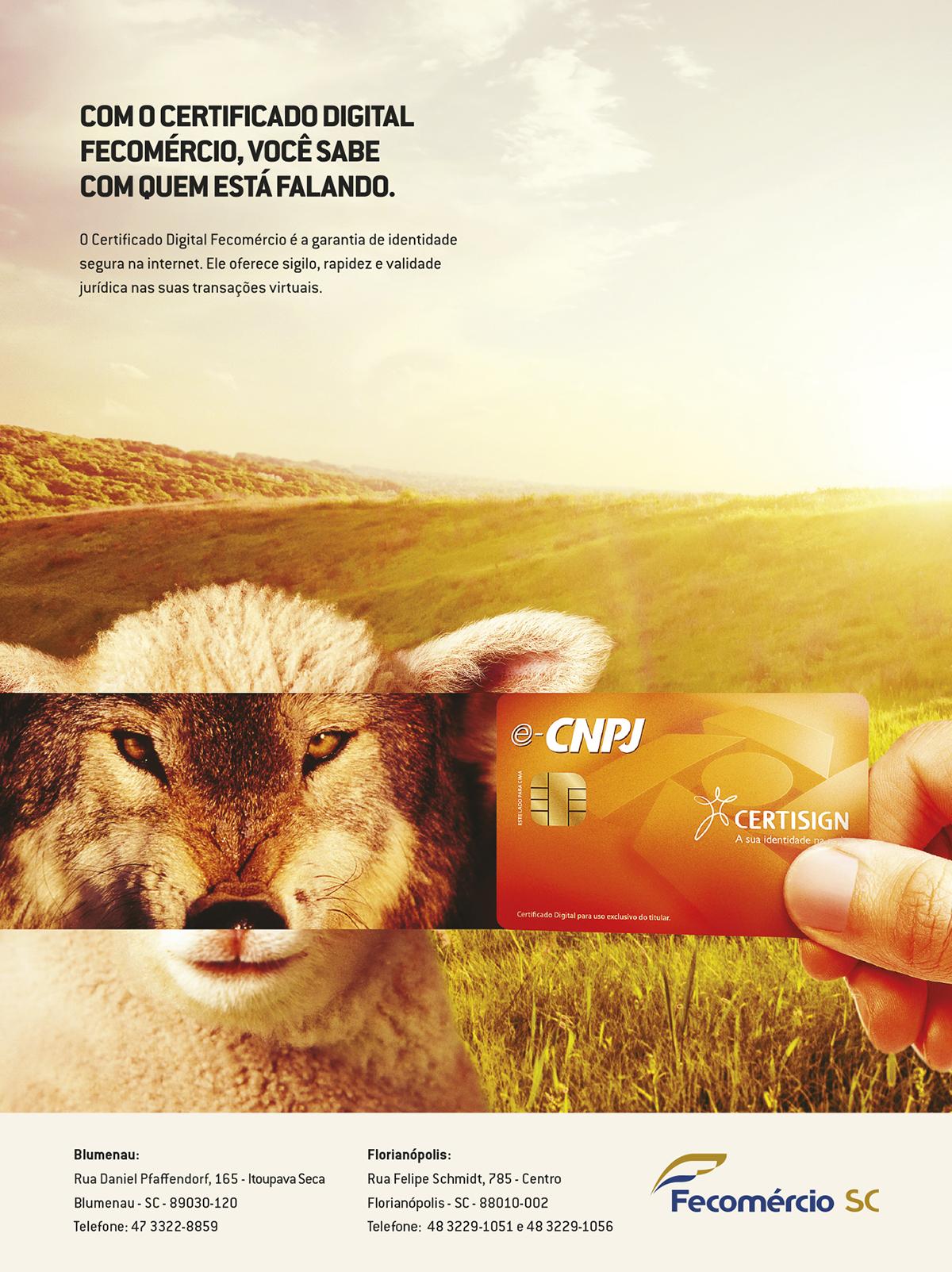 CAMP02_Anúncio01
