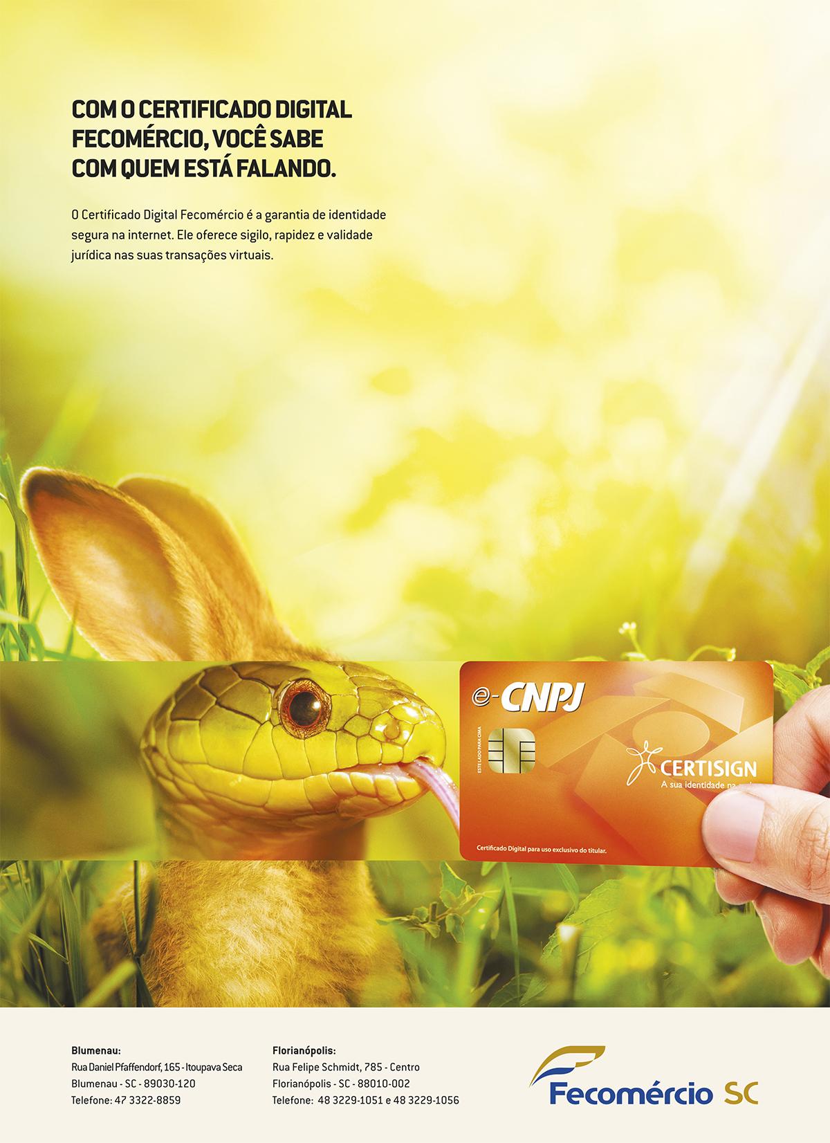 CAMP02_Anúncio02